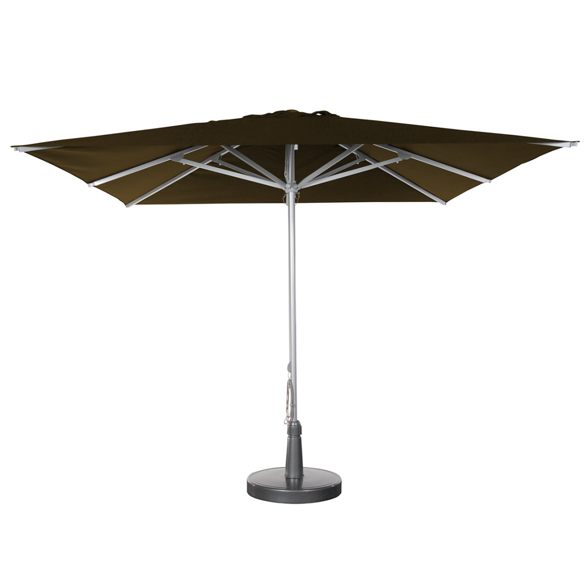 parasols_a_taupe2_1