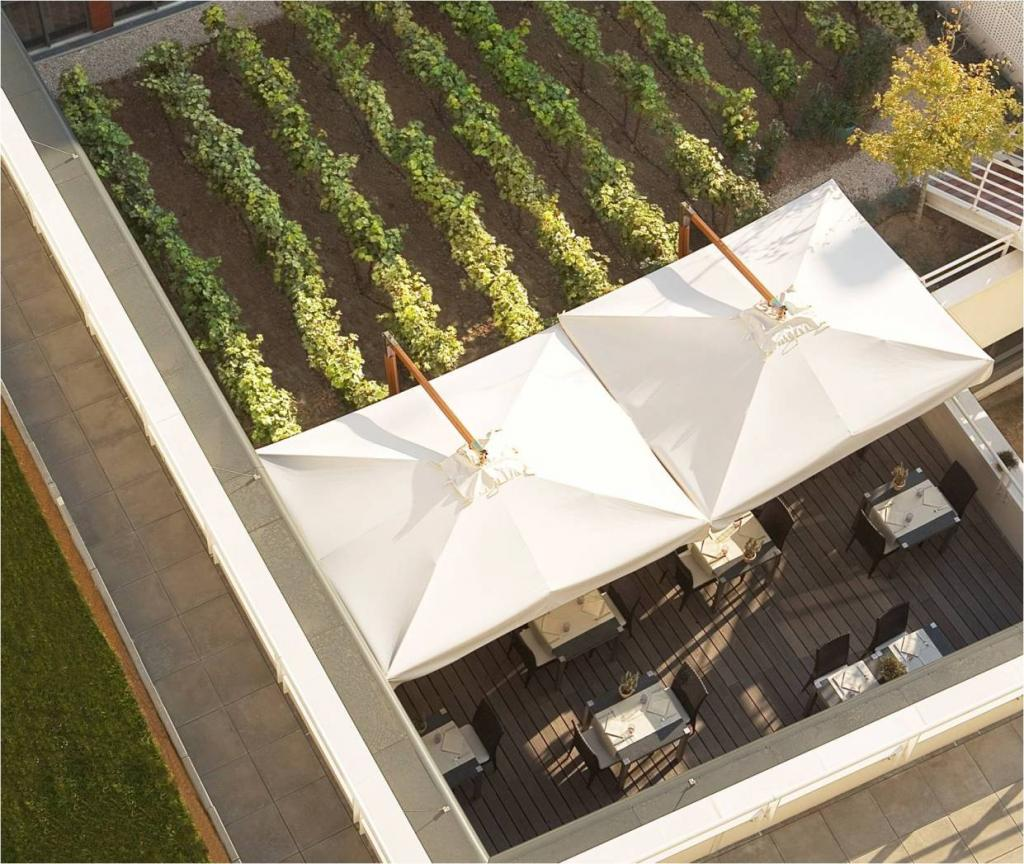 Parasol déporté restaurant Palladio Braccio SCOLARO